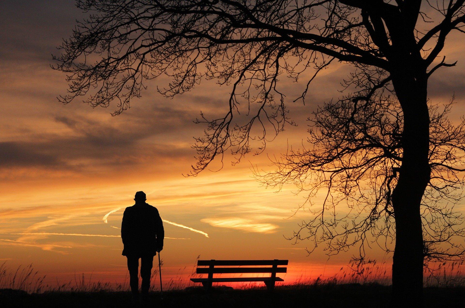 ¿Qué ocurre cuando perdemos a un ser querido?