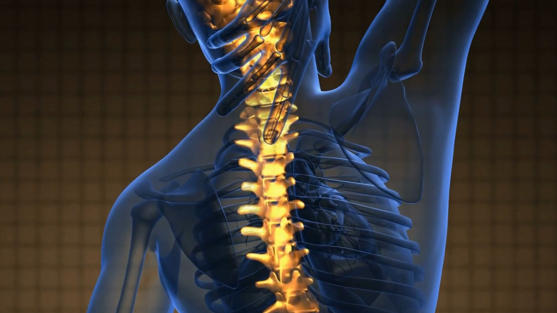 Cuida tu espalda