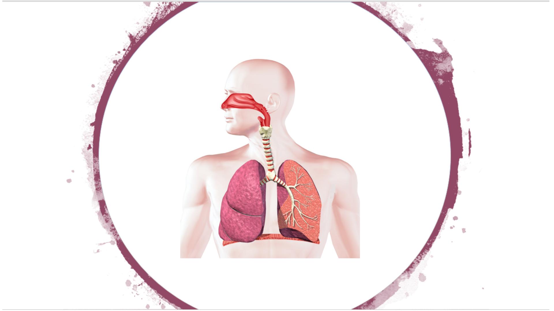 Píldoras: Enfermedad pulmonar